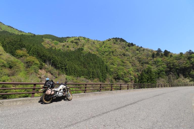 新緑とバイク