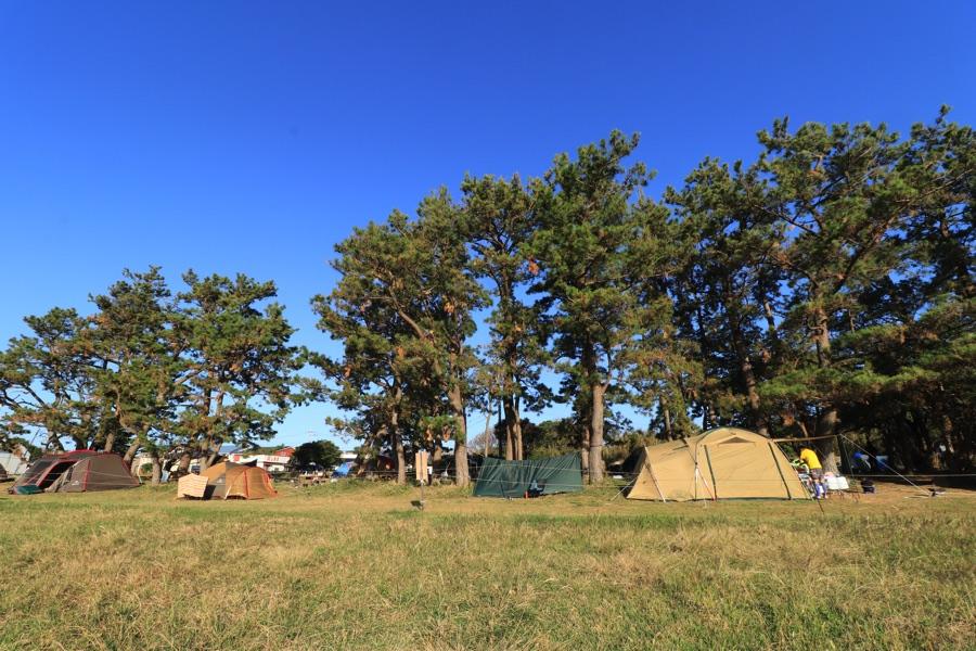 望楼の芝キャンプ場