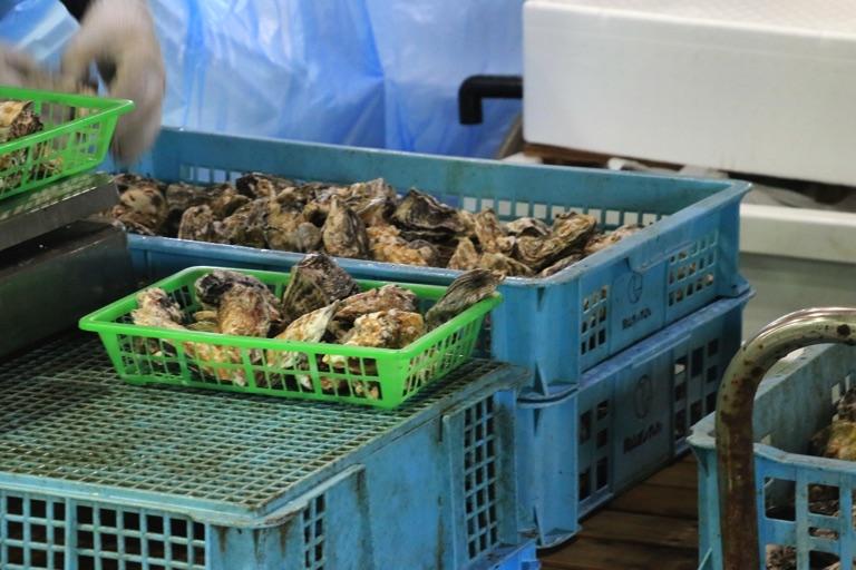 五味の市 牡蠣